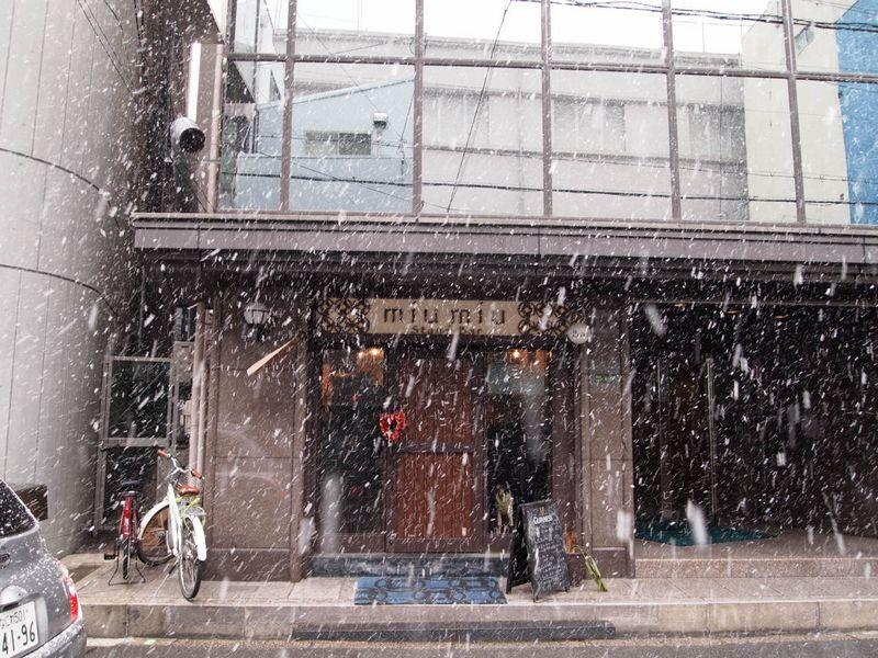 大阪にも粉雪の日。_a0050302_6201042.jpg