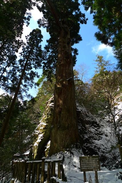 四王寺の滝と英彦山。_a0097006_1265497.jpg