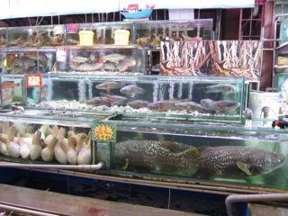 Penang 2011/2012 - (15) : Restaurants in Georgetown_d0010432_2161312.jpg