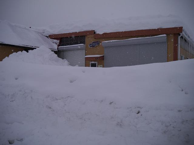 連日連夜の大雪_d0141049_17433367.jpg
