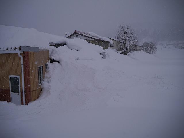 連日連夜の大雪_d0141049_17445849.jpg