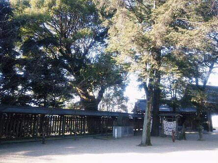 FLC日記 菊池神社その2_a0254656_14352837.jpg