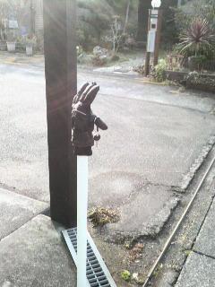 2012冬の手袋コレクション_f0228680_9174786.jpg