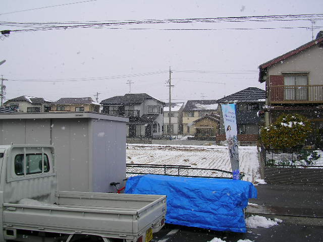雪はツラいよ_b0189682_11461438.jpg