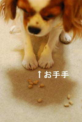 f0214121_1022672.jpg