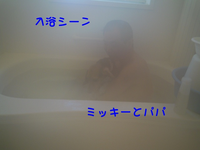 c0166622_1621106.jpg