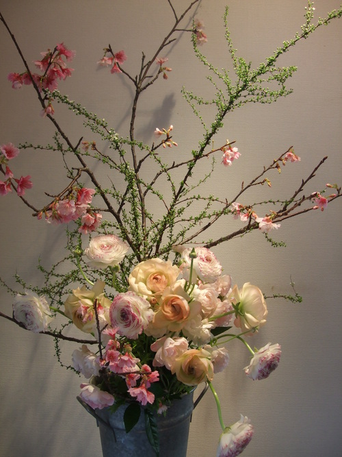 オークリーフ(寒桜と雪柳と・・)_f0049672_10331949.jpg