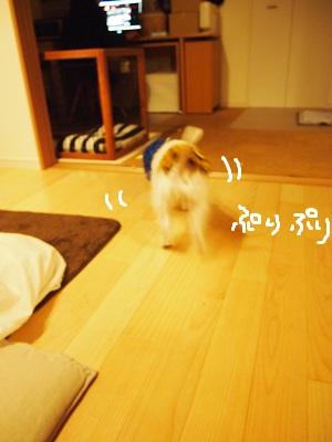 b0092580_236815.jpg