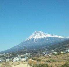 No.1608 2月3日(金):相撲協会の腐敗に学びましょう!_b0113993_0171688.jpg