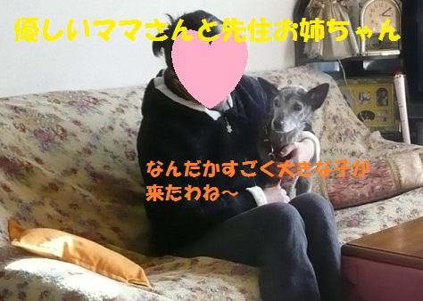 f0121712_14374238.jpg