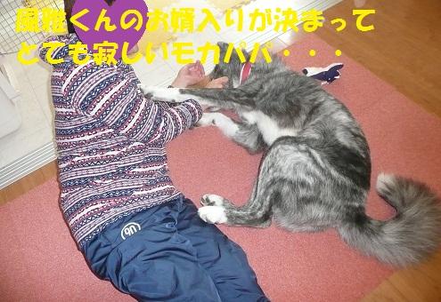 f0121712_1518166.jpg