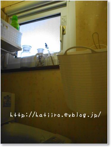 a0114514_19475314.jpg
