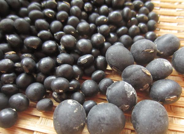 収穫した豆_d0231263_23334233.jpg