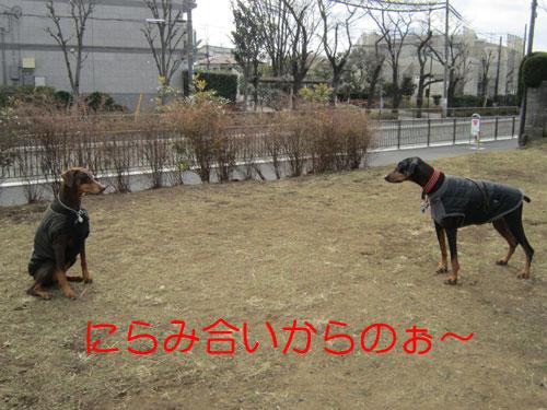 f0025769_19421330.jpg