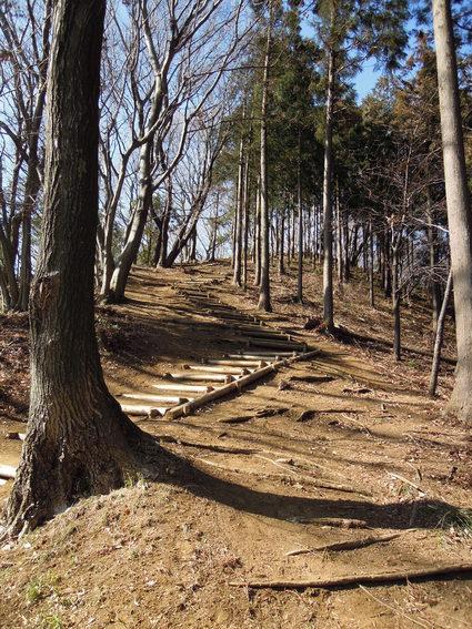 セラピーロード  ~白山順礼峠コース~_e0231387_1214250.jpg