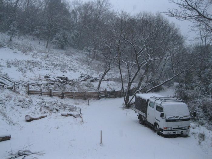 雪景色_a0125419_10435511.jpg