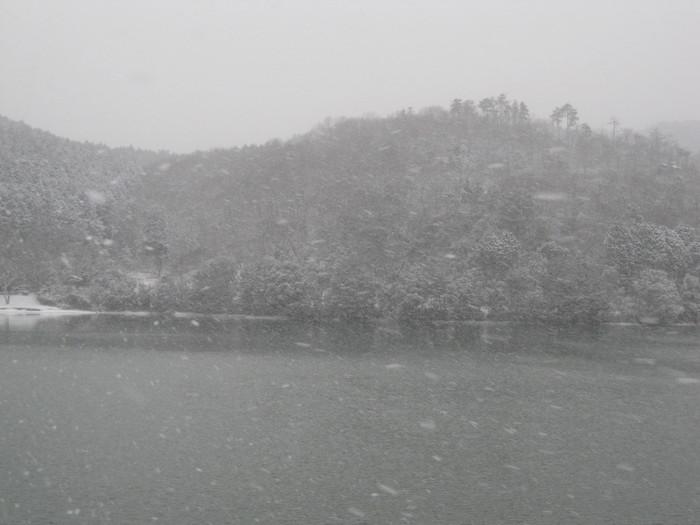 雪景色_a0125419_10491033.jpg