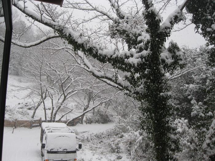 雪景色_a0125419_10503924.jpg