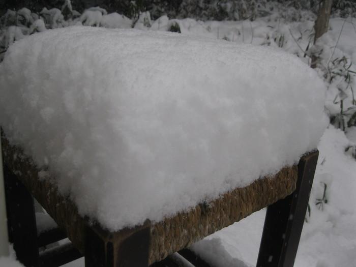 雪景色_a0125419_1053544.jpg