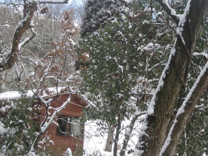 雪景色_a0125419_11104581.jpg