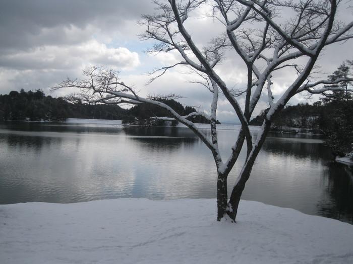 雪景色_a0125419_111176.jpg