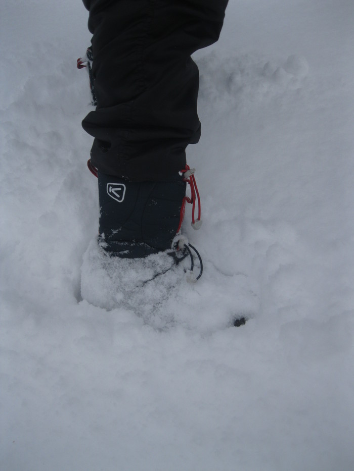 雪景色_a0125419_11132220.jpg