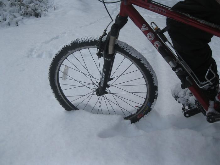 雪景色_a0125419_1151939.jpg