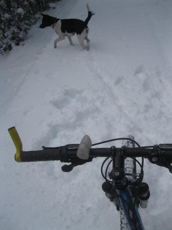 雪景色_a0125419_1164449.jpg