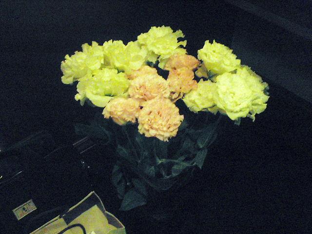 花はげんきのみなもと_a0256619_21344932.jpg