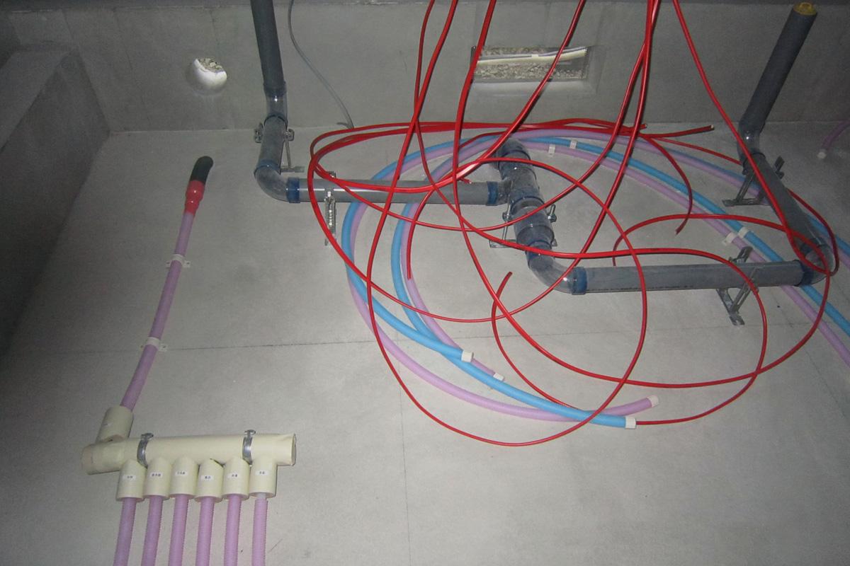 f0004525_23265679.jpg