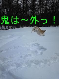 f0148927_222475.jpg
