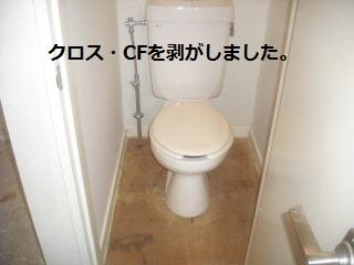 f0031037_22315259.jpg