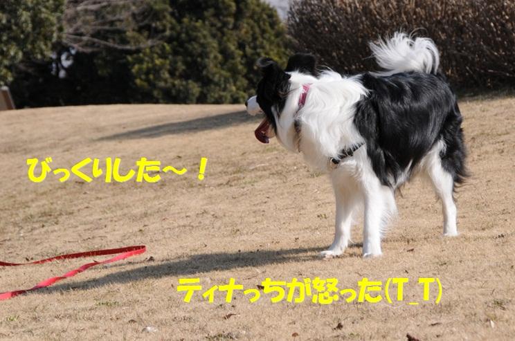 c0147241_9104447.jpg