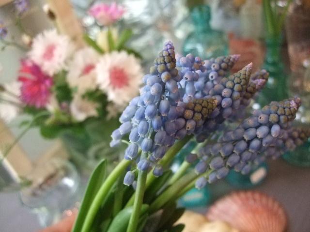 オークリーフ(微妙な花色)_f0049672_12405342.jpg