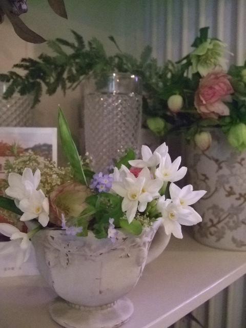 オークリーフ(微妙な花色)_f0049672_1242553.jpg