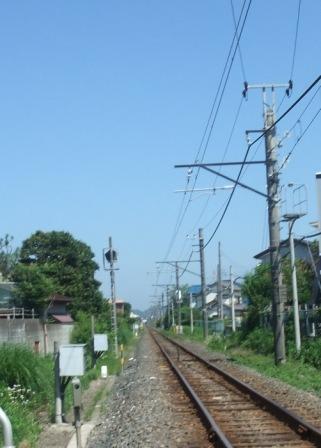 福岡拘置所の医師法違反問題_b0206085_3385036.jpg