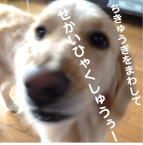 c0085188_15412379.jpg
