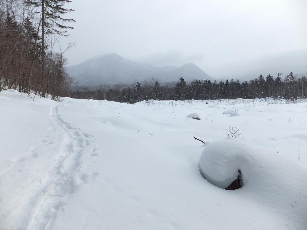 2月6日、多峰古峰山から美笛トンネルをピストン_f0138096_22542133.jpg