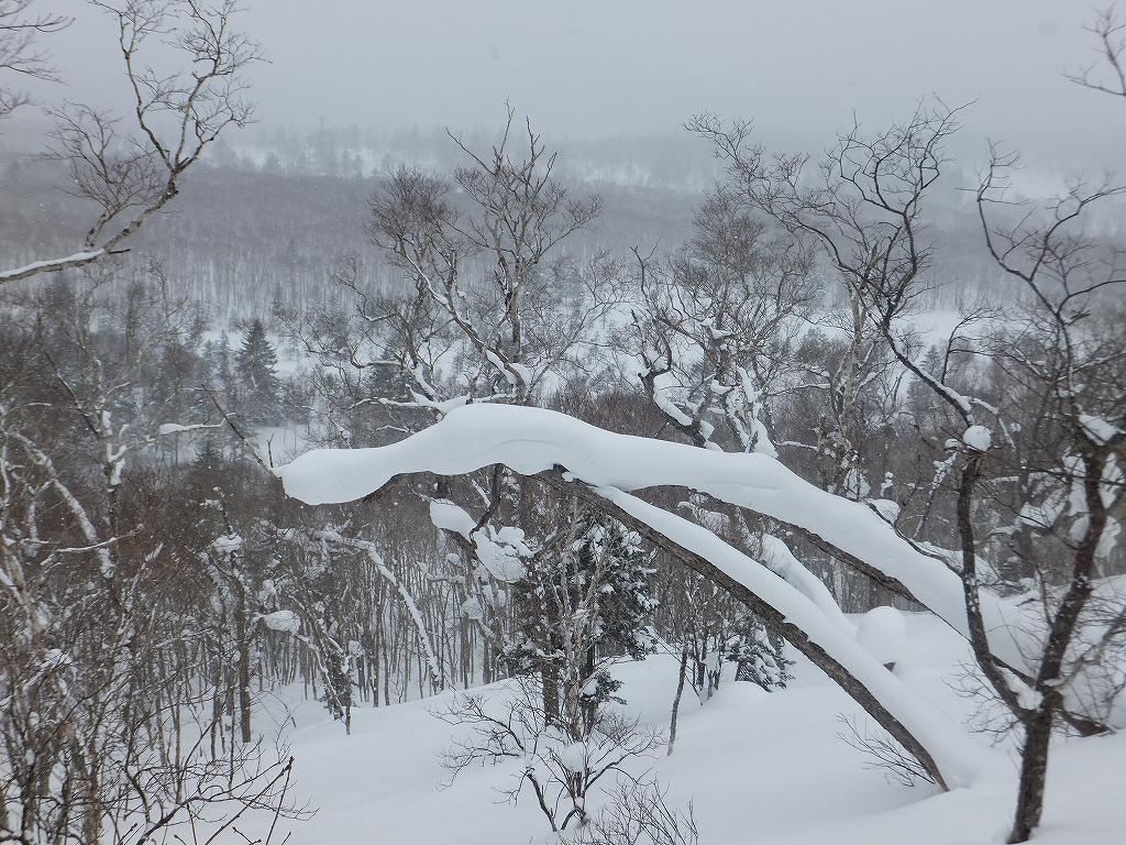 2月6日、多峰古峰山から美笛トンネルをピストン_f0138096_22543783.jpg