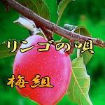 d0095910_17155131.jpg
