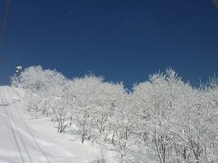 曇りのち晴れ_a0177314_21563974.jpg