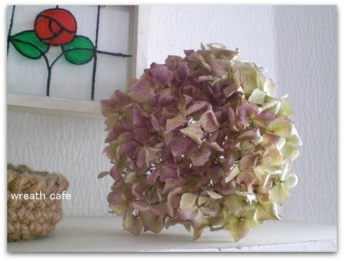 茎付紫陽花見つけた♪_c0207719_12475243.jpg