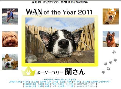 笑む犬グランプリ_b0192121_1901577.jpg