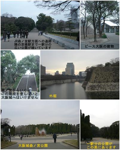 大阪城散歩_a0084343_16584263.jpg