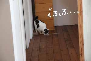 b0223446_98254.jpg