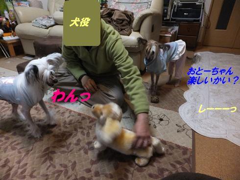 f0179203_1761133.jpg