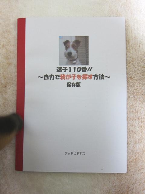d0226051_20265581.jpg