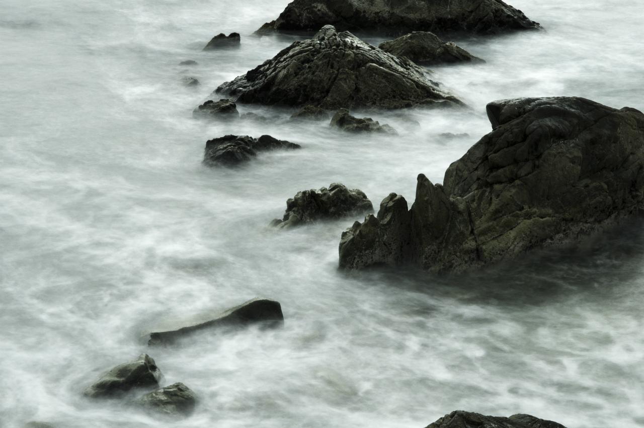 白亜紀浅海堆積物 1_f0018464_22164657.jpg