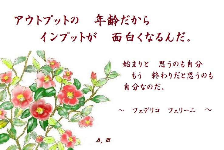 d0083472_15464276.jpg