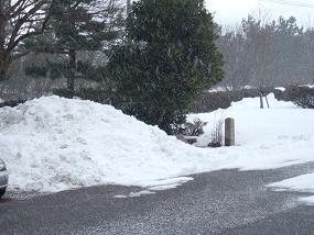 除雪された駐車場_b0226274_20381938.jpg